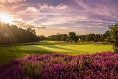 Sunningdale new course 5th hole south of England and London golf trip