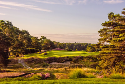 Sunningdale new course 6th hole south of England and London golf trip
