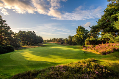 Sunningdale new course 8th hole south of England and London golf trip